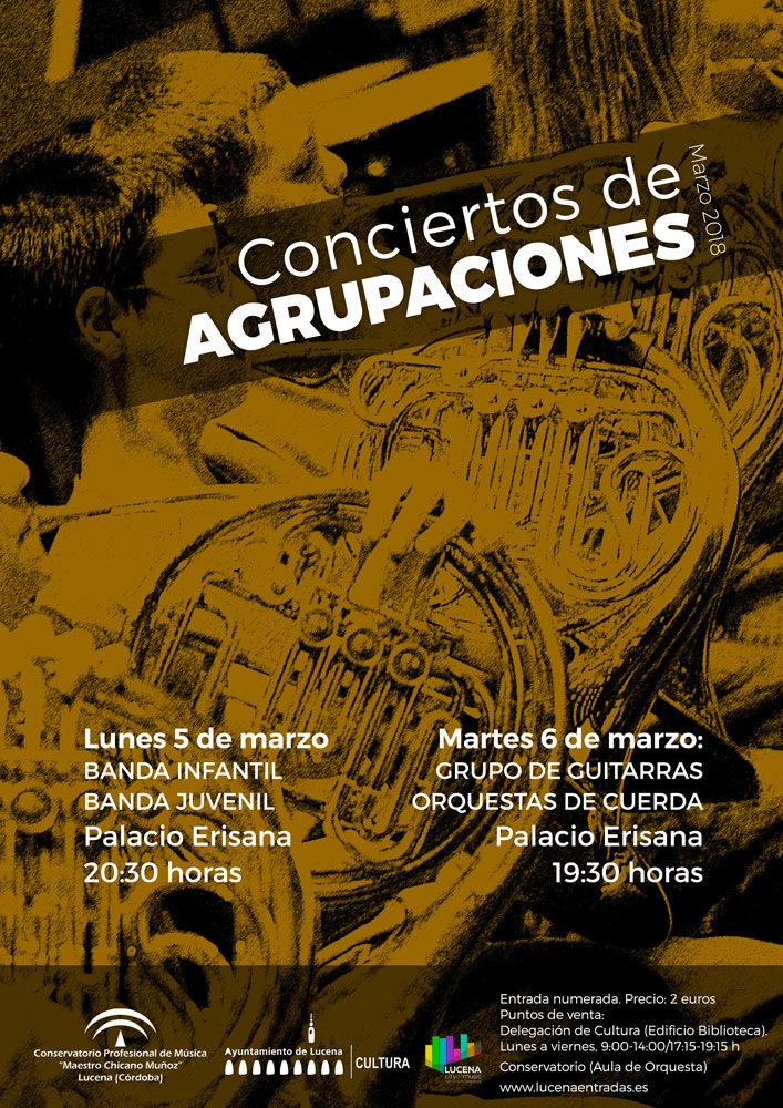 CONCIERTO DE LAS AGRUPACIONES DE CUERDA Y GUITARRA @ Palacio Erisana